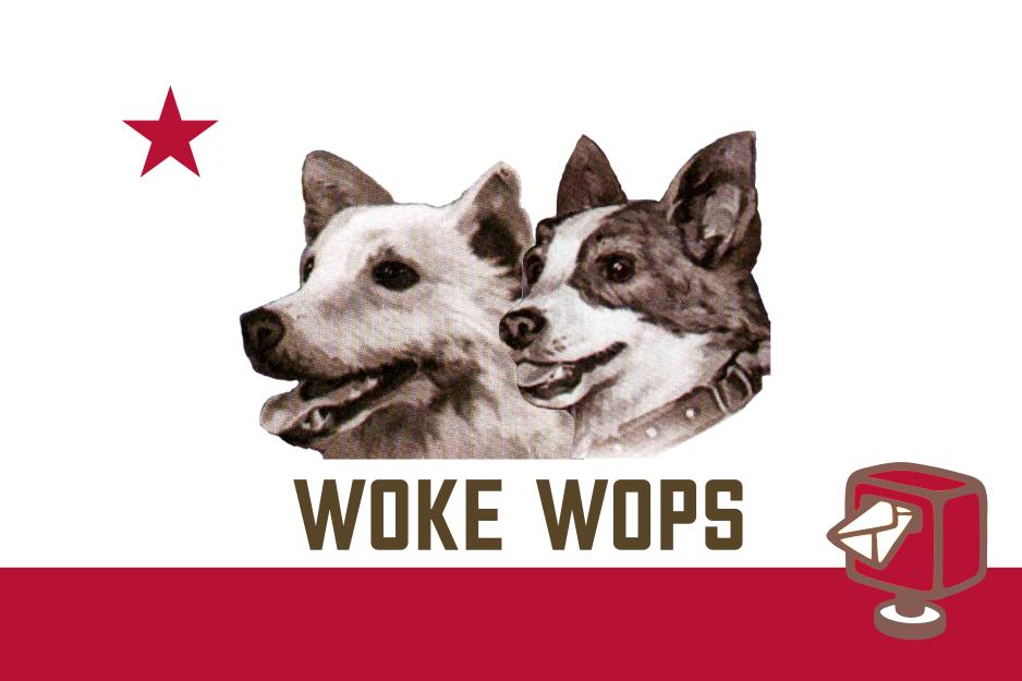 Woke Wops Speciale Elezioni 2020